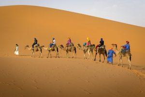 Excursiones desde Fez al Desierto